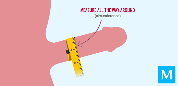 How To Measure Your Dick